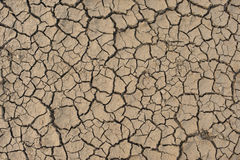 Dried Earth Background Royalty Free Stock Photo