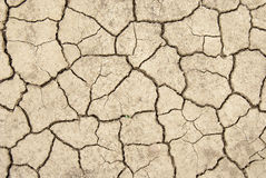 Dried earth. Background of a cracked and dried earth royalty free stock images