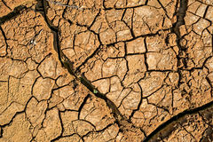 Dried earth with cracks. On summer sunny day royalty free stock images