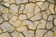 Dried earth with cracks. On summer sunny day stock image