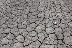 Dried earth. And dry cracks in the ground in Denmark royalty free stock photo