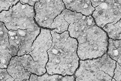 Dried earth. Hot weather texture background stock photography