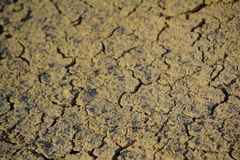 Dried earth (Malta). Dried dirt in the sun on Malta - background Royalty Free Stock Photos
