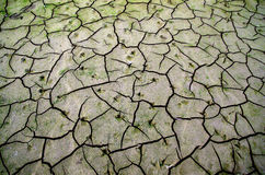 Dried earth. In the Netherlands royalty free stock photos