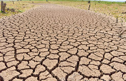 Dried earth because of rain dose not fall and the land lacked. Royalty Free Stock Image