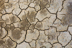 Dried earth because of rain dose not fall and the land lacked of water for agriculture Royalty Free Stock Images