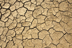 Dried earth texture Royalty Free Stock Image