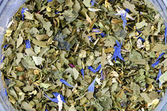 Dried edible wild herbs Royalty Free Stock Photos