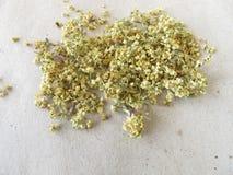 Dried elderflowers on paper Stock Images