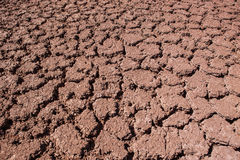 Dried and eroded ground Stock Photo