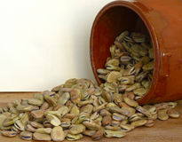 Dried fava beans and terracotta Royalty Free Stock Images