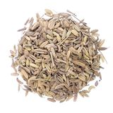 Dried fennel seeds Royalty Free Stock Image