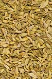 Dried fennel seeds frame filling flat lay top view texture background. Dried fennel seeds frame filling flat lay top view from above texture background royalty free stock photos