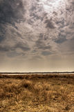 Dried field with moody sky before coming rain. In spring day stock photos