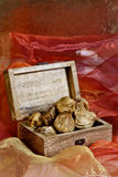 Dried figs in box Stock Photography