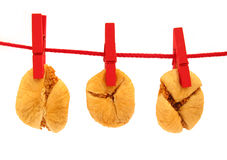 Dried figs drying on washing line. Here are dried figs, drying on washing line royalty free stock photos