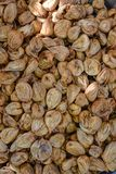 Dried figs ready for packaging royalty free stock photo