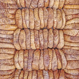 Dried figs rows and columns Royalty Free Stock Image