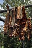 Dried fish. Sun - dried fish, Alaskan style Royalty Free Stock Image
