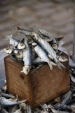 Dried Fish. Still life Royalty Free Stock Photo