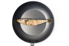 Dried Fish Stock Photos