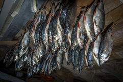 Dried fish on a background of a dark wooden ceiling. Dried fish on a background of a wooden ceiling stock photography