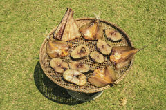 Dried fish on the bamboo grid in the sunny day,green grass Royalty Free Stock Photo