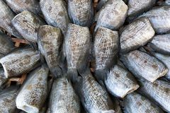Dried fish in the basket. At the marketplace Royalty Free Stock Image