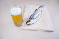 Dried fish with beer Royalty Free Stock Image