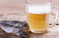 Dried fish and beer mug closeup still life Royalty Free Stock Photography