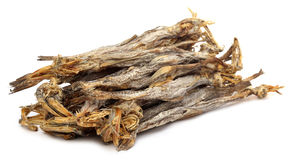 Dried fish of Bombay duck Royalty Free Stock Photos