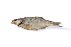 Dried fish bream. Stock Image