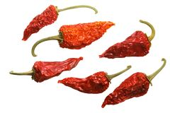 Dried Fish chiles C annuum, top, paths Stock Photos