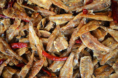 Dried fish with chili Stock Images