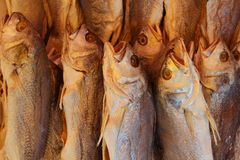 Dried Fish, Chinese Market Royalty Free Stock Photography