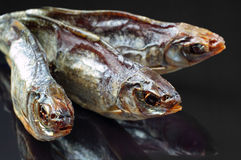 Dried fish closeup Royalty Free Stock Images