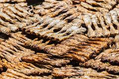 The Dried Fish Stock Photo