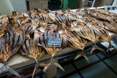 Dried fish on display on a market.  Royalty Free Stock Photography