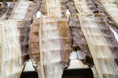 Dried fish on display on a market. Madeira, Portugal Royalty Free Stock Photos