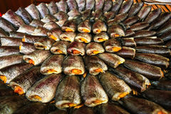 Dried Fish04 stock photography