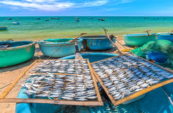 Dried fish drying on a basket boat Stock Photos