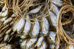 Dried fish. Food processing fish. The fish to mix with the salt and then dried by the sun on the market for sale Royalty Free Stock Photo
