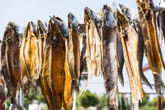 Dried fish Stock Images