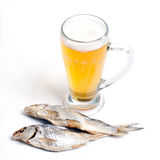 Dried fish and a glass of beer Royalty Free Stock Photo
