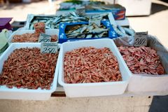 Dried fish and grilled boiled shrimp on stall on summer market for sale. Salted local seafood. Fishing concept. Stock Images