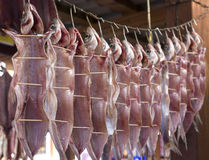 Dried Fish hanging Stock Photo