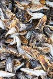 Dried fish heads. Stock Photos