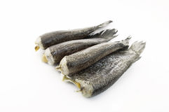 Dried fish. Isolate on white background Royalty Free Stock Photography