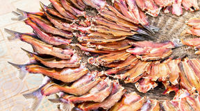 Dried fish at a local open air market in Cambodia Royalty Free Stock Photography
