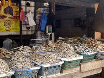 Dried fish market Royalty Free Stock Photography